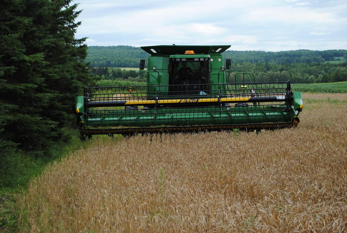 Bilan agricole: les six premiers mois ont été catastrophiques