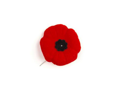 Cérémonie de commémoration du Jour du Souvenir à Louiseville
