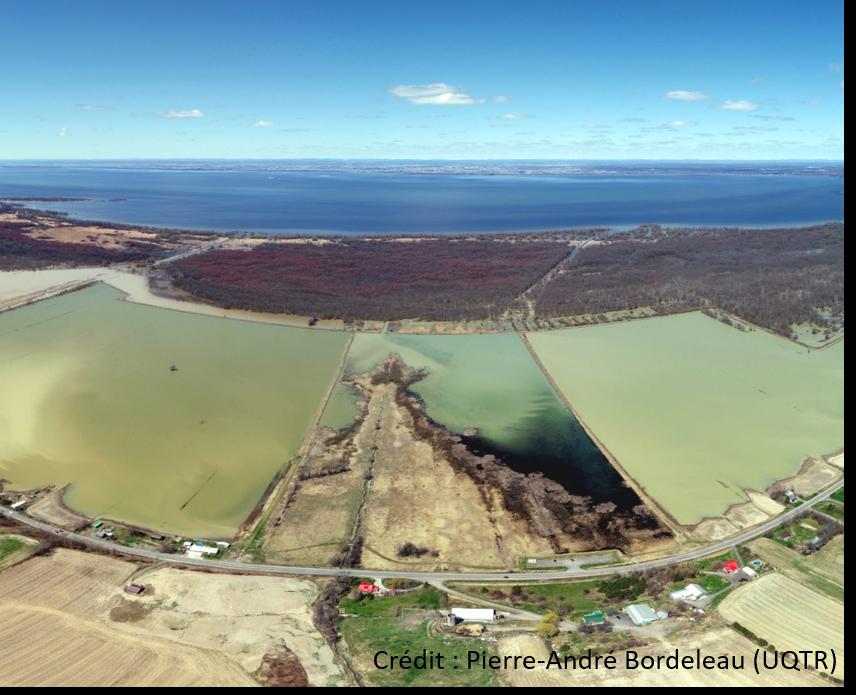 Préserver l'usage et la qualité des zones inondables du lac Saint-Pierre