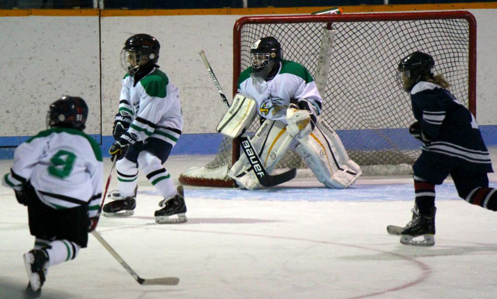 Hockey: l'Estrie, la Mauricie et Québec concluent une entente